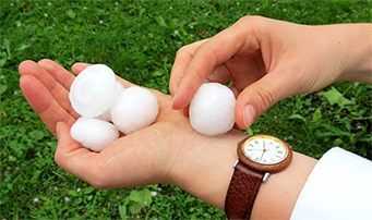 A man holding a handful of large, golf-ball sized pieces of hailstones.